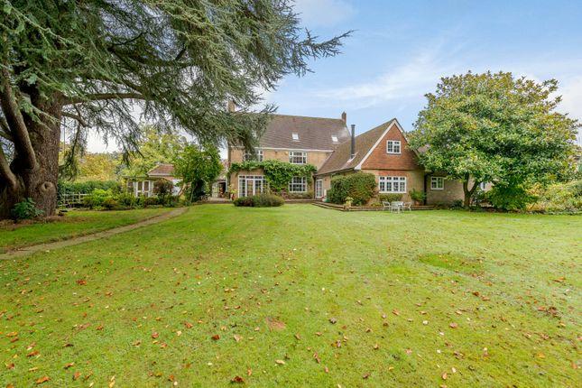 Thumbnail Detached house for sale in Denne Park, Horsham, West Sussex