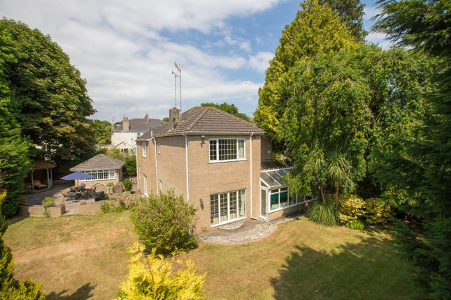 Thumbnail Detached house for sale in Cricketfield Road, Torquay