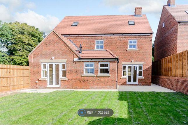 Thumbnail Detached house to rent in Shearwater Road, Hemel Hempstead