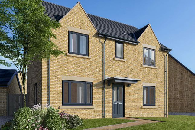 "Thumbnail Detached house for sale in ""The Leverton"" at Field Road, Ramsey, Huntingdon"