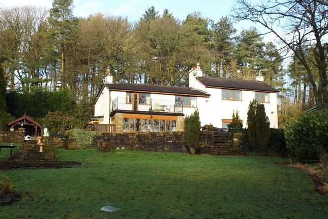 Thumbnail Detached house to rent in Calf Hey Road, Haslingden, Lancashire