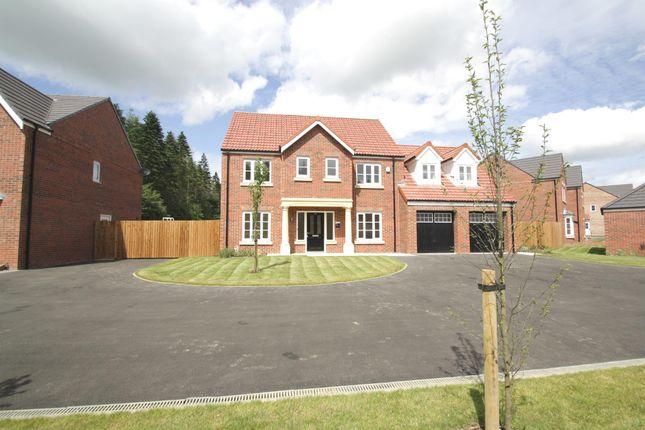 Thumbnail Detached house for sale in Snowdrop Avenue, Wynyard, Billingham