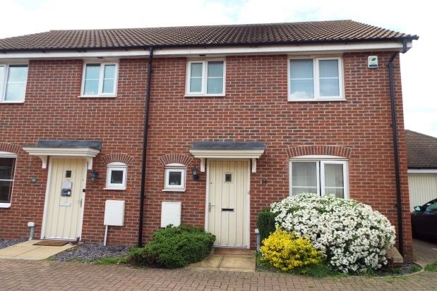 Thumbnail Semi-detached house to rent in Rosehip Avenue, Red Lodge, Bury St. Edmunds