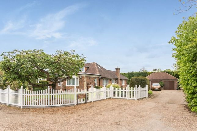Thumbnail Detached bungalow for sale in Warltersville Way, Horley