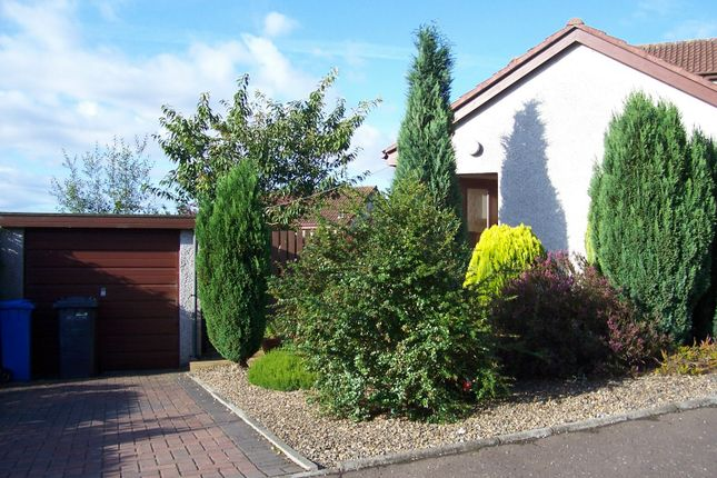 Thumbnail Semi-detached bungalow to rent in Dempster Place, Dunfermline
