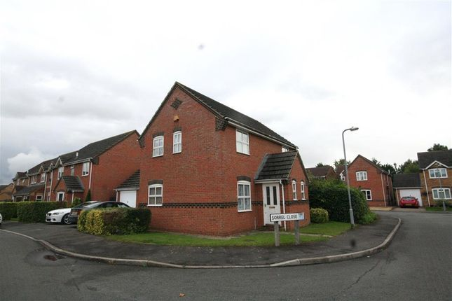 Thumbnail Detached house to rent in Sorrel Close, Stamford