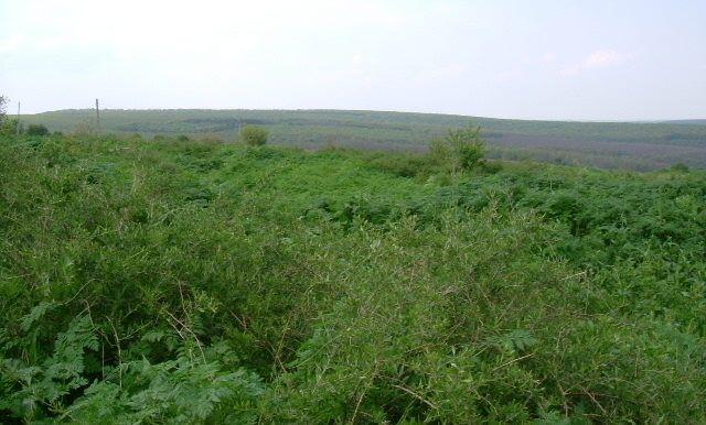 Thumbnail Land for sale in Dryanovets 3, Dryanovets, Bulgaria
