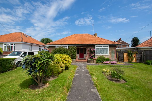 Thumbnail Bungalow for sale in Manor Road, Deal