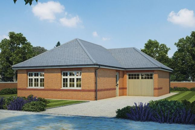 """Thumbnail Bungalow for sale in """"Hadleigh"""" at Hawkins Road, Exeter"""