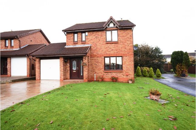 Thumbnail Detached house for sale in Wilton Court, Newton Aycliffe