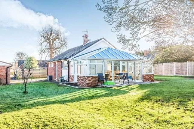 Thumbnail Bungalow for sale in The Moorings, Pill, Bristol