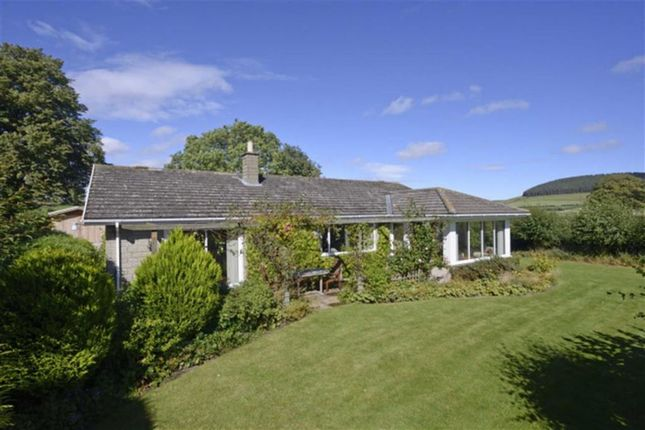 Thumbnail Detached bungalow for sale in Old Road, Chatton, Northumberland