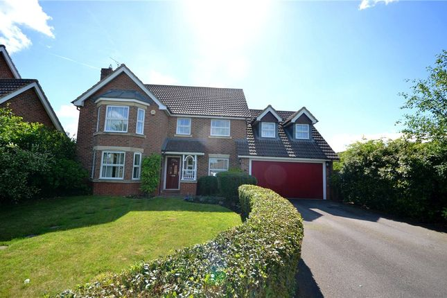 Thumbnail Detached house for sale in Skylark Close, Basingstoke, Hampshire