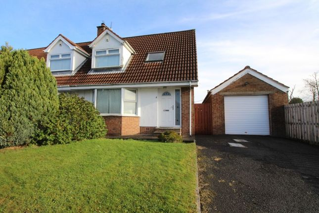 Thumbnail Semi-detached house to rent in Hillview Crescent, Carrickfergus