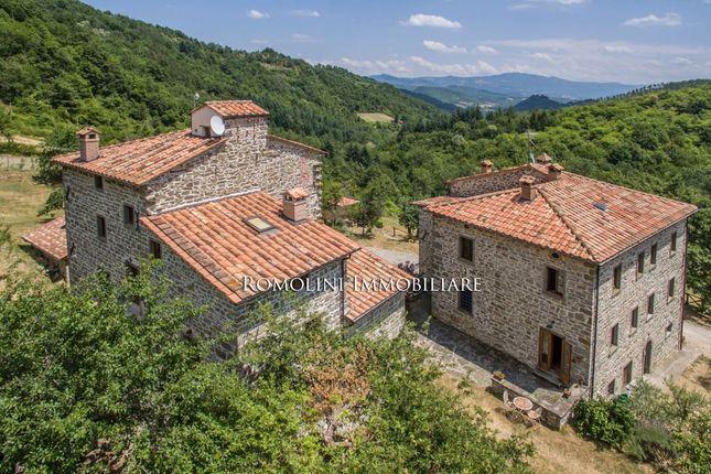 Organic Agriturismo For Sale Tuscany, Caprese Michelangelo