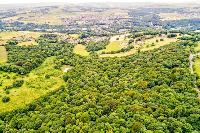 Thumbnail Land for sale in Hey Wood, Farnley Tyas, Huddersfield, West Yorkshire