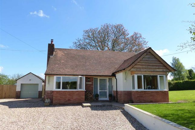 Thumbnail Detached bungalow for sale in Strathmore, Shirefield, Five Lanes, Caerwent