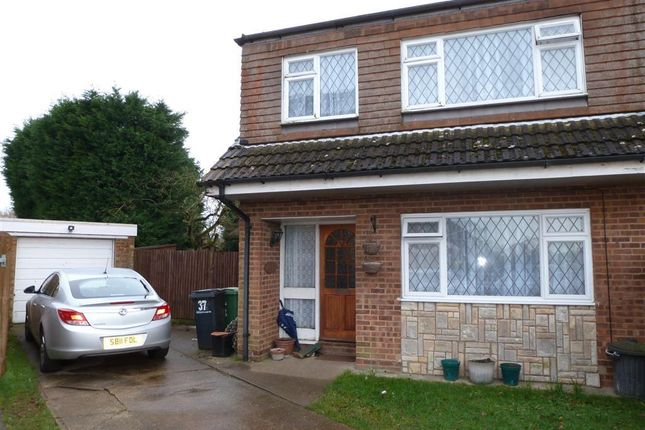 Thumbnail 3 bed semi-detached house to rent in Eddington Close, Loose, Maidstone