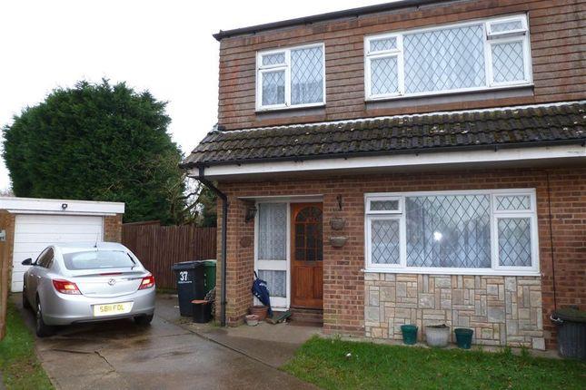 Thumbnail Semi-detached house to rent in Eddington Close, Loose, Maidstone