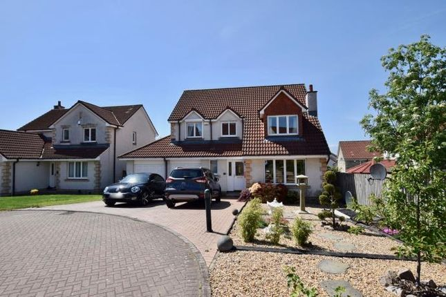 Thumbnail Detached house to rent in Dovecot Way, Dunfermline