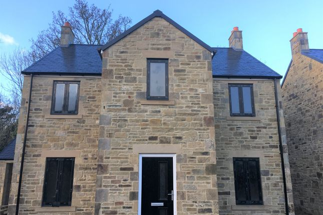 Thumbnail Detached house for sale in Main Road, Stocksfield