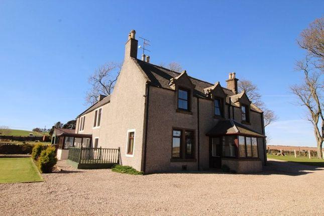 Thumbnail Detached house to rent in Fernieflatt Farmhouse, Kinneff, Montrose