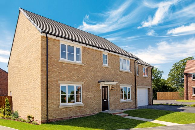 "Detached house for sale in ""The Asenby"" at St. Thomas's Way, Green Hammerton, York"