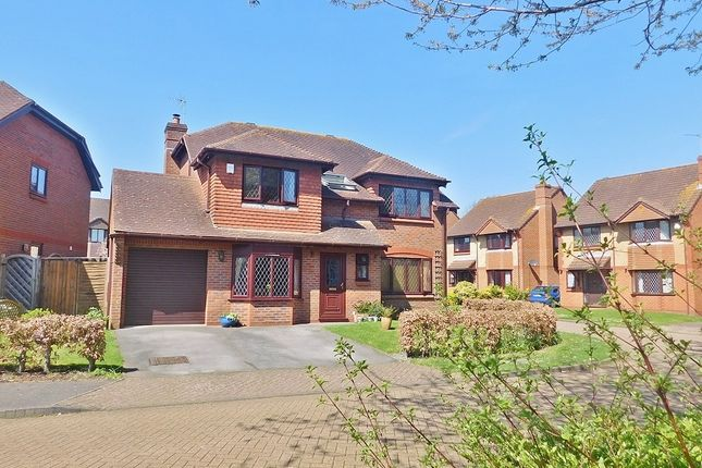Thumbnail Detached house for sale in St. Christopher Avenue, Fareham