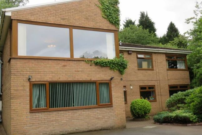 Thumbnail Detached house for sale in The Dell, Morpeth, Northumberland