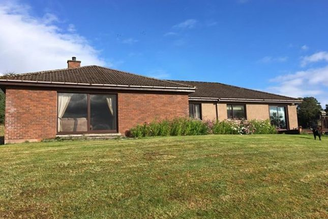 Thumbnail Bungalow for sale in Rearquhar, Dornoch, Highland