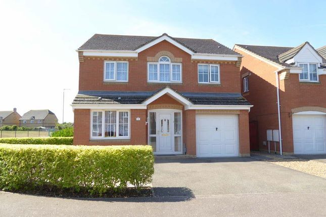 Thumbnail Detached house to rent in Lilac Grove, Biggleswade