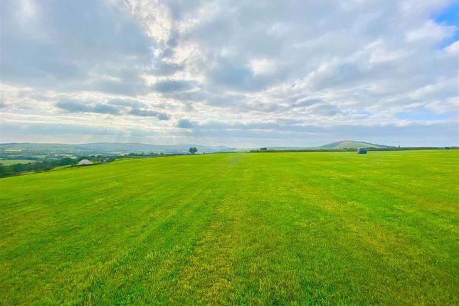 Land for sale in Glogue SA36