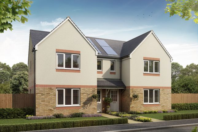 """Thumbnail Semi-detached house for sale in """"The Elgin"""" at Newfield Gardens, Stonehouse, Larkhall"""