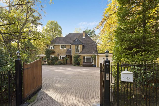 Thumbnail Detached house for sale in Dukes Covert, Bagshot