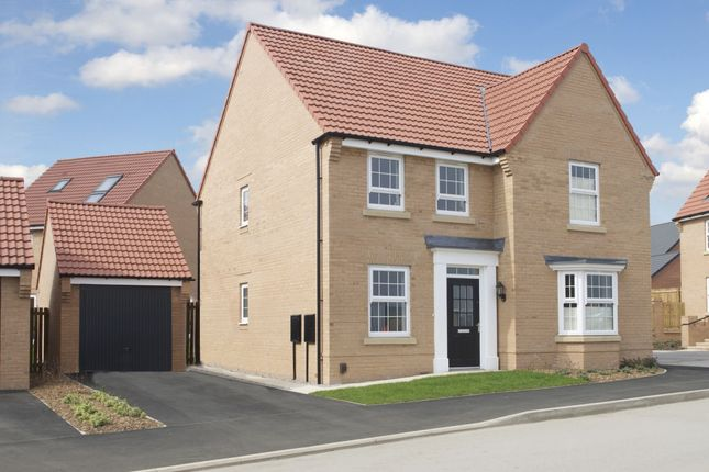 "Thumbnail Detached house for sale in ""Holden Special"" at Hollygate Lane, Cotgrave, Nottingham"
