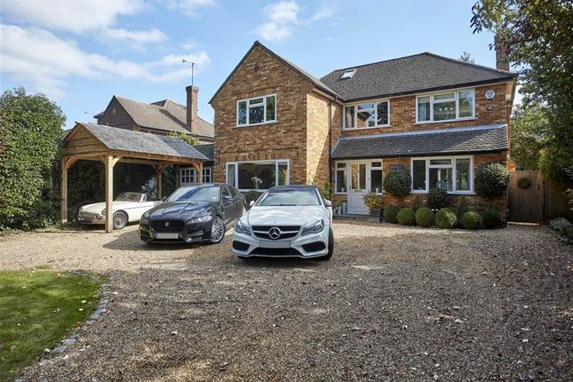 Thumbnail Detached house for sale in Altwood Drive, Maidenhead, Berks