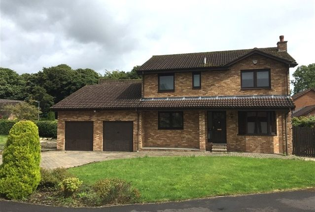 Thumbnail Detached house to rent in Hunter Grove, Bathgate