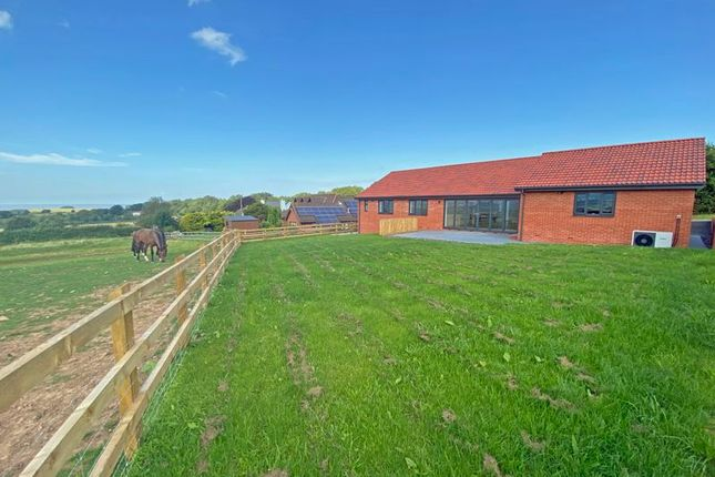 Thumbnail Detached bungalow for sale in West Quantoxhead, Taunton