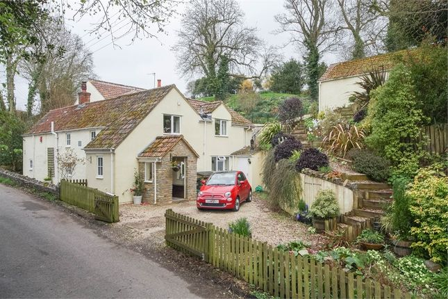 Thumbnail Detached house for sale in Cops Cottage, Sparrow Hill Way, Weare, Somerset