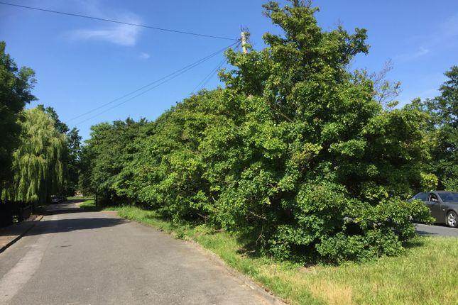 Land for sale in London Road, Stapleford Tawney, Romford