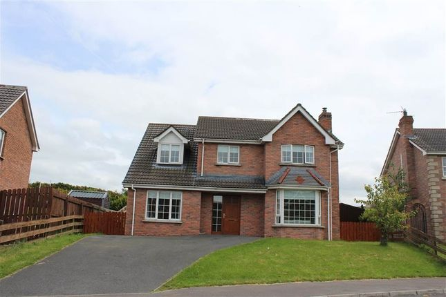 Thumbnail Detached house for sale in Fullerton Road, Newry