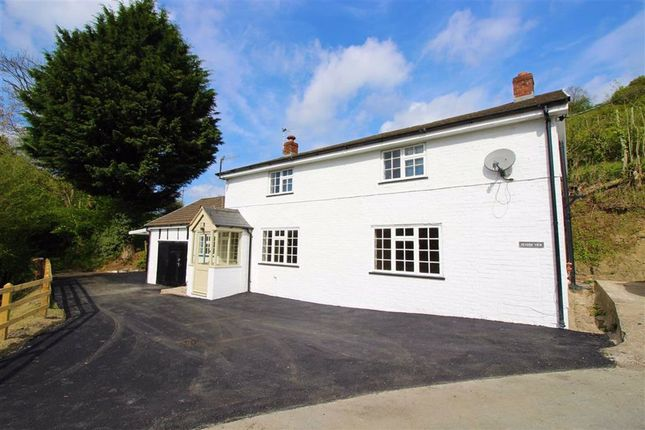 Thumbnail Cottage for sale in Severn View, Fron, Montgomery, Powys