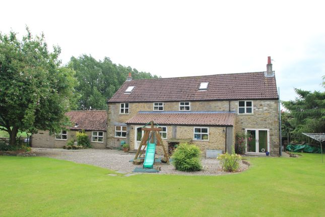 Thumbnail Detached house to rent in Stearsby, York