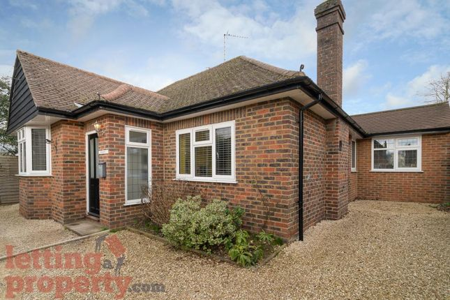 Thumbnail Detached bungalow to rent in Hammersley Lane, Penn, High Wycombe