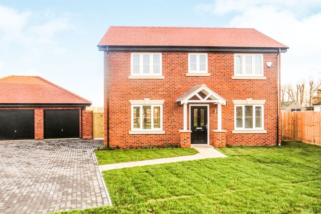Thumbnail Detached house for sale in Acres Walk, Beck Row, Bury St. Edmunds