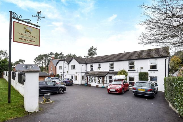 Thumbnail Property for sale in Ringwood Road, St. Ives, Ringwood