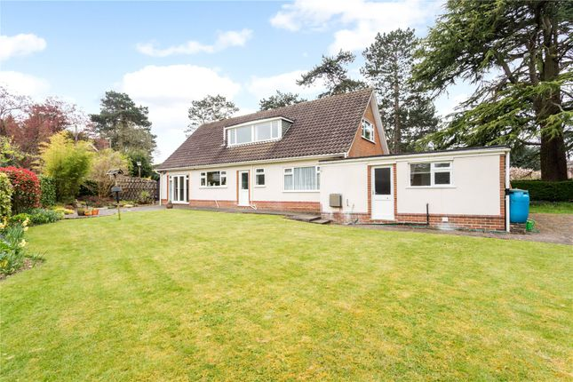 Thumbnail Detached house for sale in Clovelly Avenue, Warlingham, Surrey