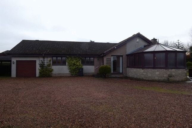 Thumbnail Bungalow to rent in West Park, Leslie, Fife