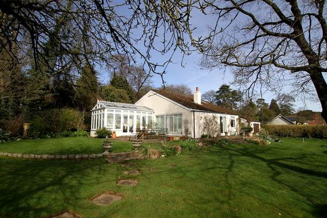 Thumbnail Detached house for sale in Winter Hill, Cookham Dean