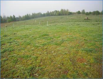 Thumbnail Land for sale in Plot 5, Eden Business Park, Penrith